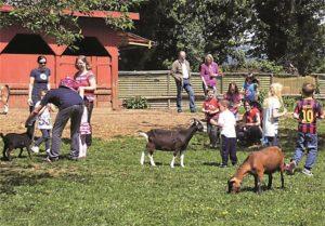 Schwanenteich-Kinderbauernhof @ Schwanenteich | Sinzig | Rheinland-Pfalz | Deutschland